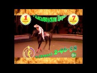 ViVa Zorro в Кисловодском цирке
