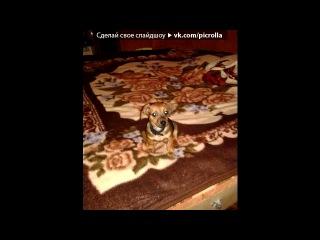 �� ���� ����� ��� ������ Bambo  - Pussy Pussy (Omar! 2k12 Remix)          ������� 2012, �������, �����, ����� ����, mp3. best. ��� ���� 2012, sansation. �� 47, ���� ��, ������� 2012. Picrolla
